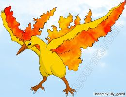 Moltres - Pokemon by haddek