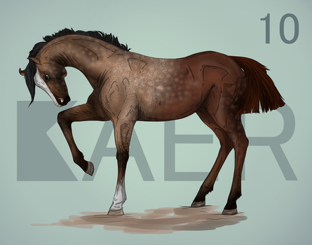 Kaer Import 10 GIVEAWAY CLOSED by livia-is-an-artist