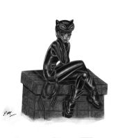 Catwoman by em-scribbles
