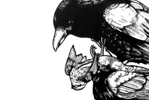 detail crows 2 by Moy-a