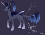 Next Gen: Prince Somber Moon by qatsby