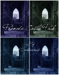 Premade Castle by desideriasp-stock