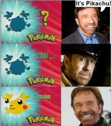 Chuck Norris is ALWAYS Right by nazo55