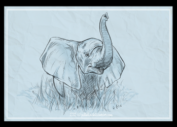 The Baby Elephant by Jullelin