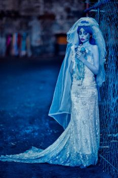 Corpse Bride - 07 by sinademiral