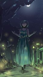 Night of the Fireflies by faustsketcher