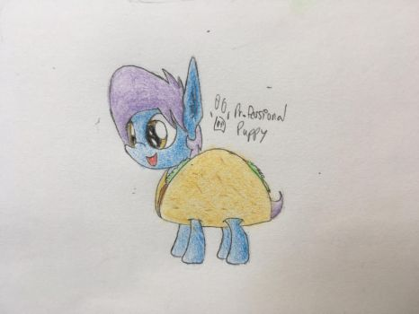 Gift - Taco Fluff by ProfessionalPuppy