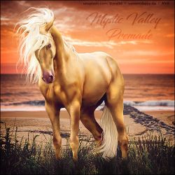 Pally Sunset Beach Premade by VIP-EquineArt