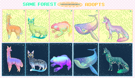 Same Forest Adopts (OPEN) Points Only by Vexkex