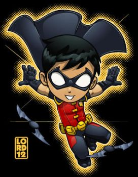 Young Justice- Robin by lordmesa