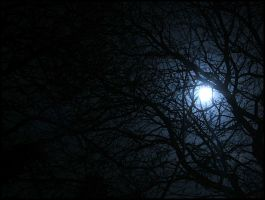 cold moonlight by Keil0r