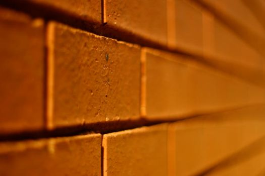 another brick in the wall, pt1 by bearscanbemean