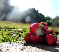 Strawberry fields forever by Ideas-in-the-sky