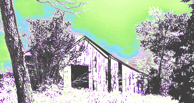 Barn for intrO-verted cows by calsixty