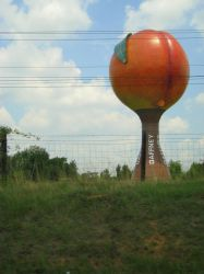 Gaffney Peach by Lonelily641