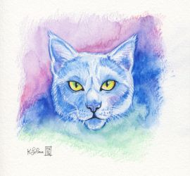 Watercolor Cat by Dreamspirit