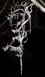 Icicle by one-tough-one