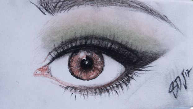 The brown eye by Sarsur20
