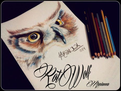 Owl by rotwolf93