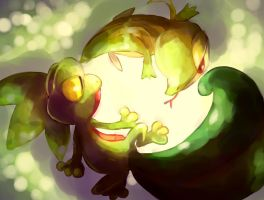 Pokemon : Treecko and Snivy