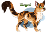 Tawnypelt - Warriors Cats (4/100) by Denicah