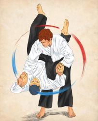 Aikido by Clear-mooN