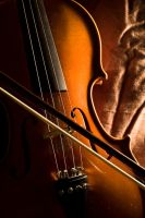 The Violin by quebot