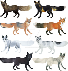 Fox Colors I by witherlings