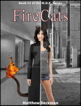FireCats Cover by Migitmd
