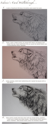 Wolf Card Walkthrough by Sidonie
