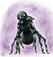 Hanimal Mode 12- Arizona Black Hole Spider by Erika-Zayenna