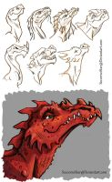 Dragon Designs by CourtneysConcepts
