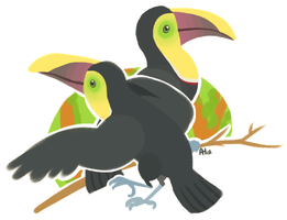 Toucans by chickavree
