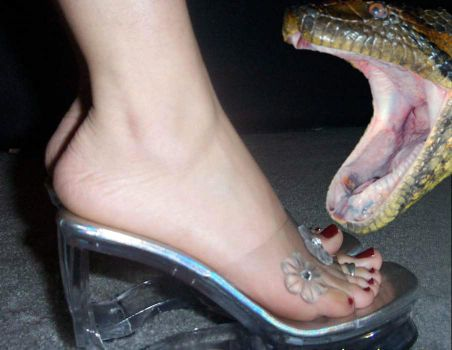 Vore Manip: Big snake loves Michelles sexy feet by wsaef