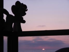 sunset from our family beach house's balcony by EquestriaPlush