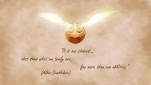 It is our choices... by paulohtf