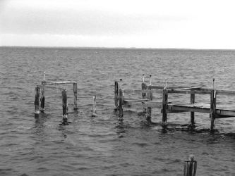 old pier by candescere