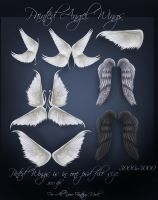 Angel Wings by moonchild-lj-stock