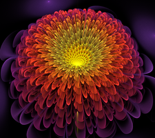 Cosmic Chrysanthemum by CopaseticDesign