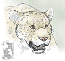 -Warm Up- Jaguar by Godspoison