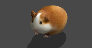 CUTE SIMPLE HAMSTER by Oo-FiL-oO
