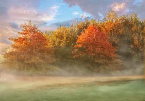 Foggy Autumn Morning on the Trail by JAE462