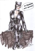 Catwoman NYCC 2010 by danielhdr