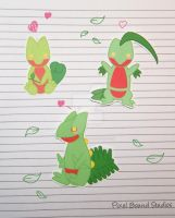 Treecko/Grovyle/Sceptile Stickers and Magnets