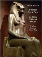 Egyptian Goddess Sekhmet Statue by XiuLanStock