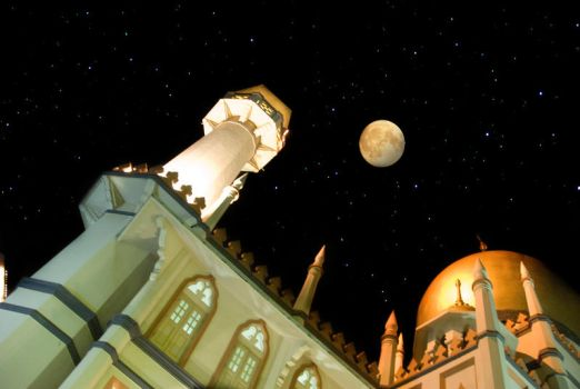 Sultan Mosque 2 by jayliberator