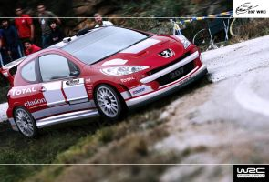 Peugeot 207 World Rally Car by EvolveKonceptz