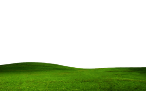 GRASS PNG FILE -TRANSPARENT by TheArtist100