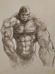 the Hulk by quintvc