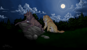 Were Pair-Wolves by RedWolfmoon